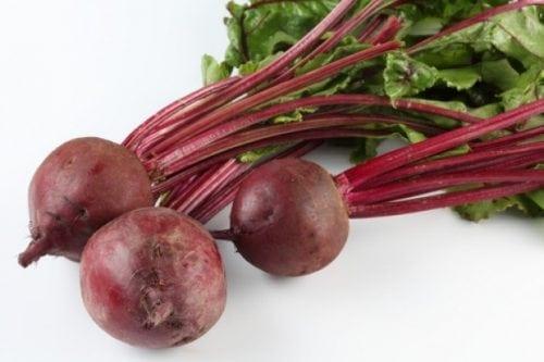vegetales para plantar en mayo junio remolacha