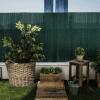 imagen-cañizo-pvc-verde-jardin-06