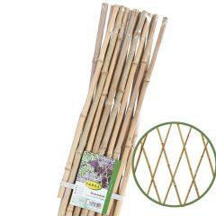 celosia-bambu-web-faura