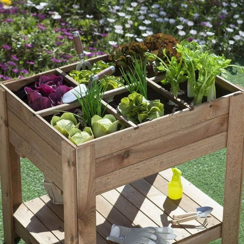 31090015-huertos-urbanos-table-garden-germin-60-2