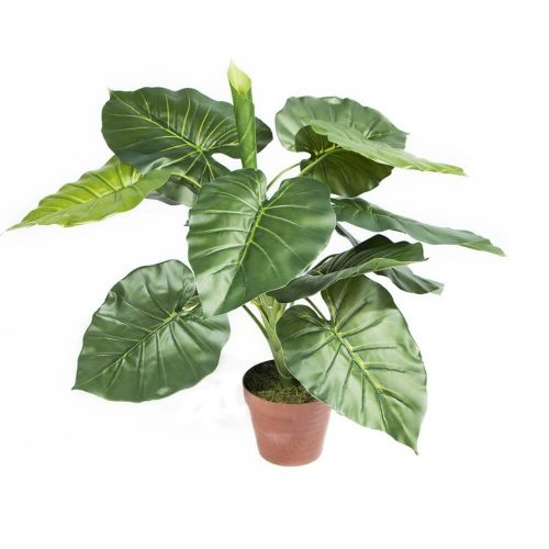 74010030-planta-artificial-taro-73-cm