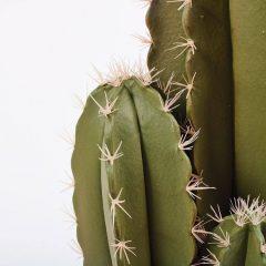 74010038-planta-artificial-cactus-organo-64-cm-3