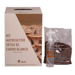 kit-autocultivo-setas-de-cardo-blanco-pleurotus-eryngii-gardeneas-4