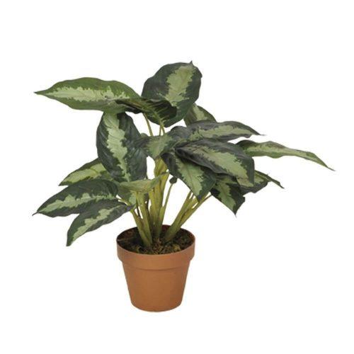 planta-artificial-galatea-49-cm-74010017