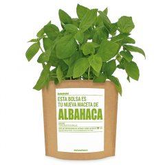 huerto-pocket-aromaticas-albahaca-1