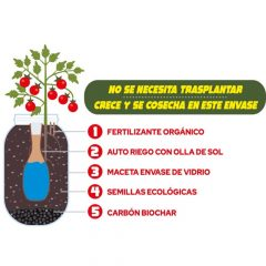 kit-cultivo-de-interior-olla-cherry-1