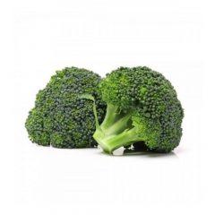 planton-de-brocoli-folclorica-6-uds-gama-tradicional